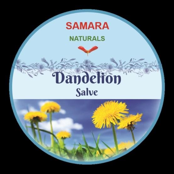 """Dandelion """"Arthritis, Scalp"""" Salve"""