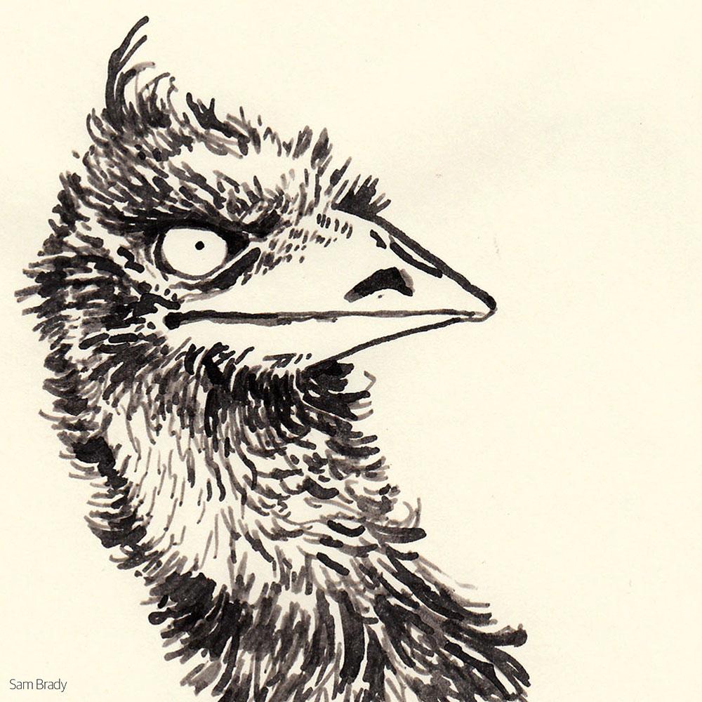 Inktober Emu
