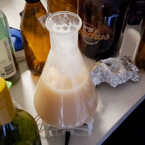 Yeast starter in flask