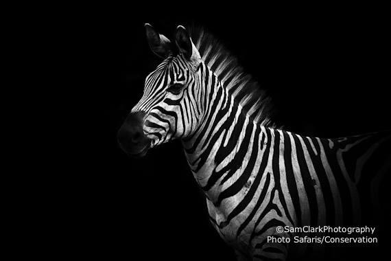 ZMU 2014-03 Uganda