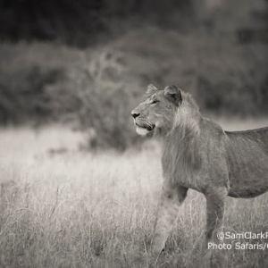 LQEU 2014-01 Uganda