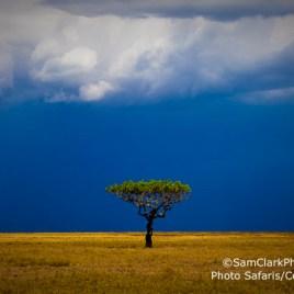 LST 2009-01 Tanzania