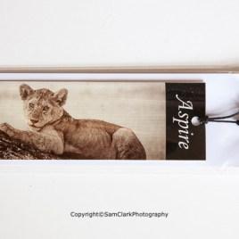 Lion Cub – Aspire