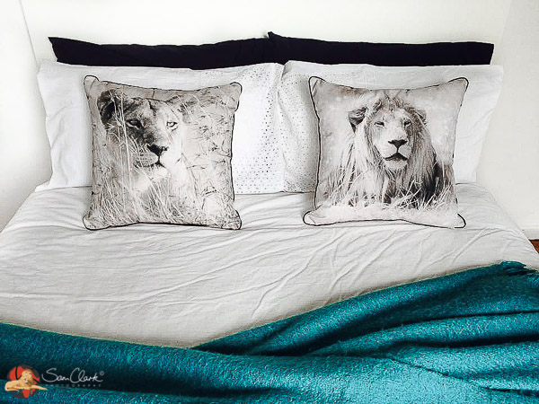 cushions-and-blue-bed