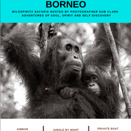 PEOPLE OF THE FOREST, BORNEO – 1st – 8th April, 2021 – My Deposit