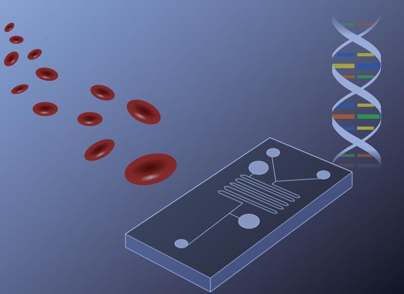 polymer plasma treatment for microfluidics