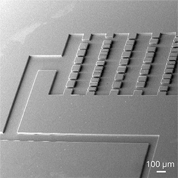 Oxide Etching for Microchannel Fabrication