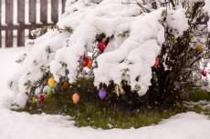 Schnee-Fruehling-1006699