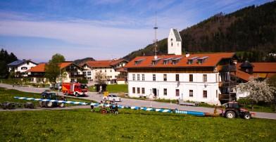 Maibaum-Rossholzen-1008438