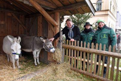 Minister Brunner bei der Krippe mit Eseln.