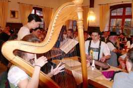 kl-Harfe bei Volksmusikwoche