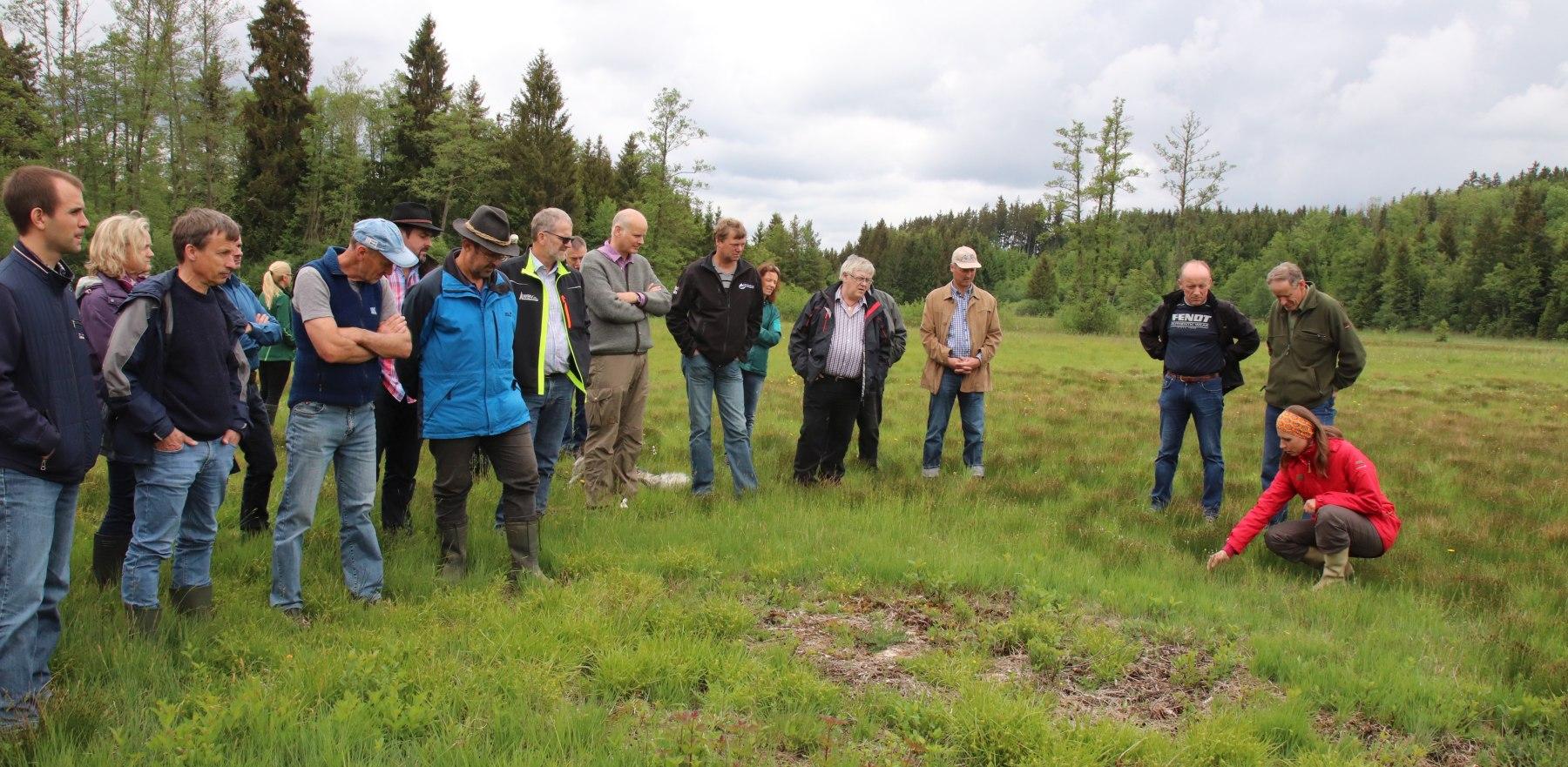 Biologin Gabriele Müggenburg (rechts) erklärte die Flora und Fauna auf einer Streuwiese im Schwabinger Moos