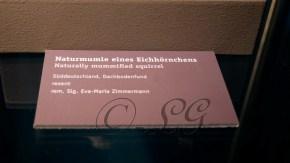 P11 MumienArchivedesLebens