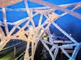 Spinnennetz (4)