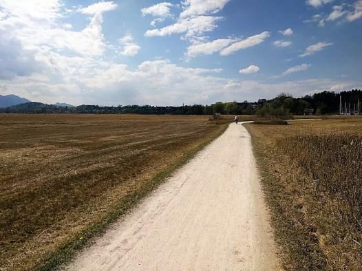 einsamer Radler am Chiemsee-Uferweg bei Aiterbach