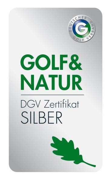 DGV_Logo_hoch_fin_silber_oS