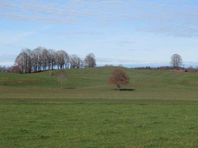 Bauernland bei Brunnfeld