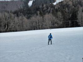 einsamer Langläufer in Aigen