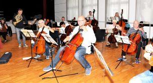 Cellogruppe