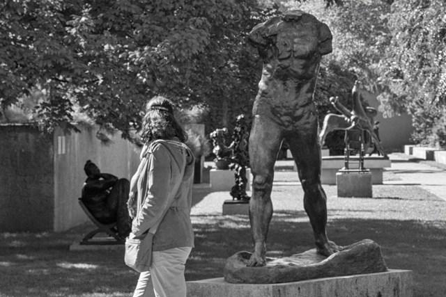 Statues - By Sam Meddis
