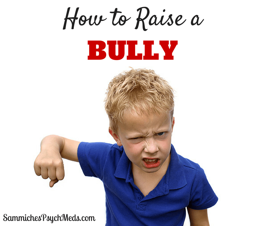 Everybody knows the best way to raise a bully is to be a crappy parent. Never mind that some kids act out because they have special needs and not because the parents aren't doing their jobs.