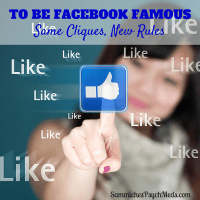 Being Facebook Famous is the new popularity contest. Same cliques, new rules.