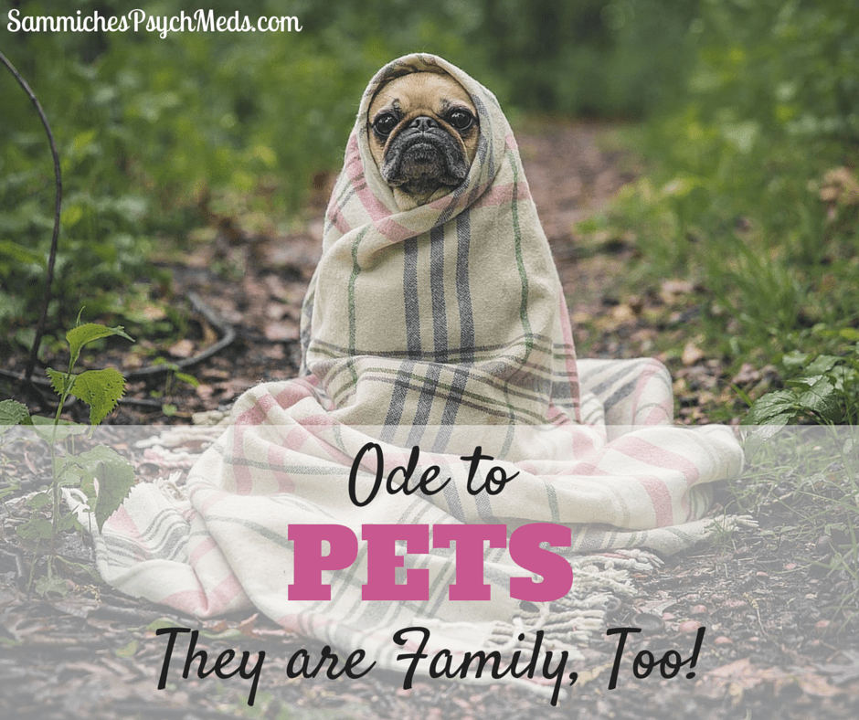 When it comes to family, sometimes our pets are just as loved and important as other family members.