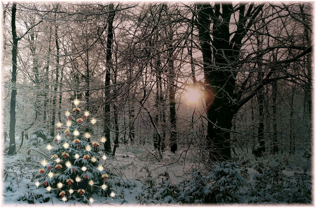 Keeping the Magic in Christmas When The Little Ones Are Grown
