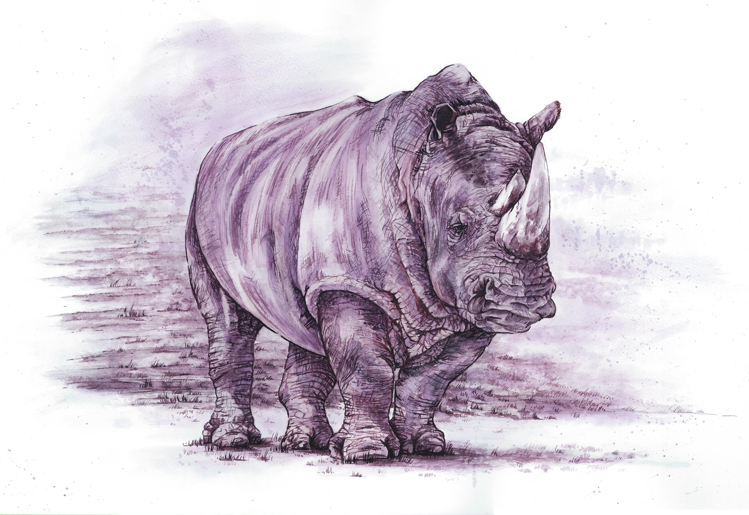 rhino by Melissa Proudlock wine painting Painted with Wine
