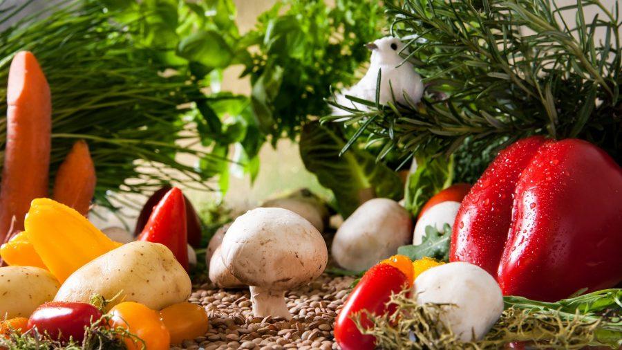 Kitchen Scraps Gardening, or How I Made Dead Vegetables Even Deader