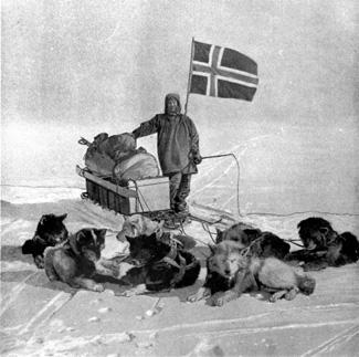 Roald Amundsen oma koertega