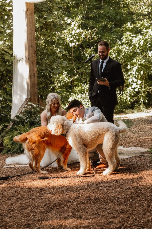 Bride and groom with doggy ring bearers.