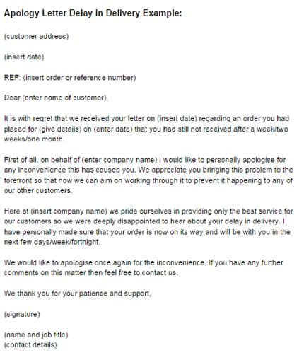 apology email to customer for delay