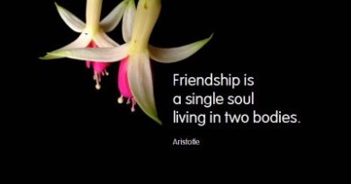 Famous Friendship quotes