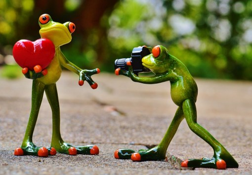 Frog valentines image
