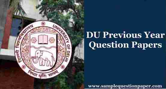 DU Previous Year Question Papers