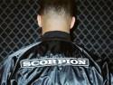 drakescorpion