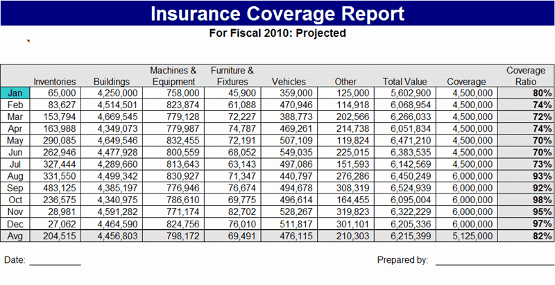Insurance Coverage Report Template Free Formats Excel Word