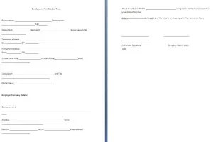Sample Form for Verification of Employment Archives