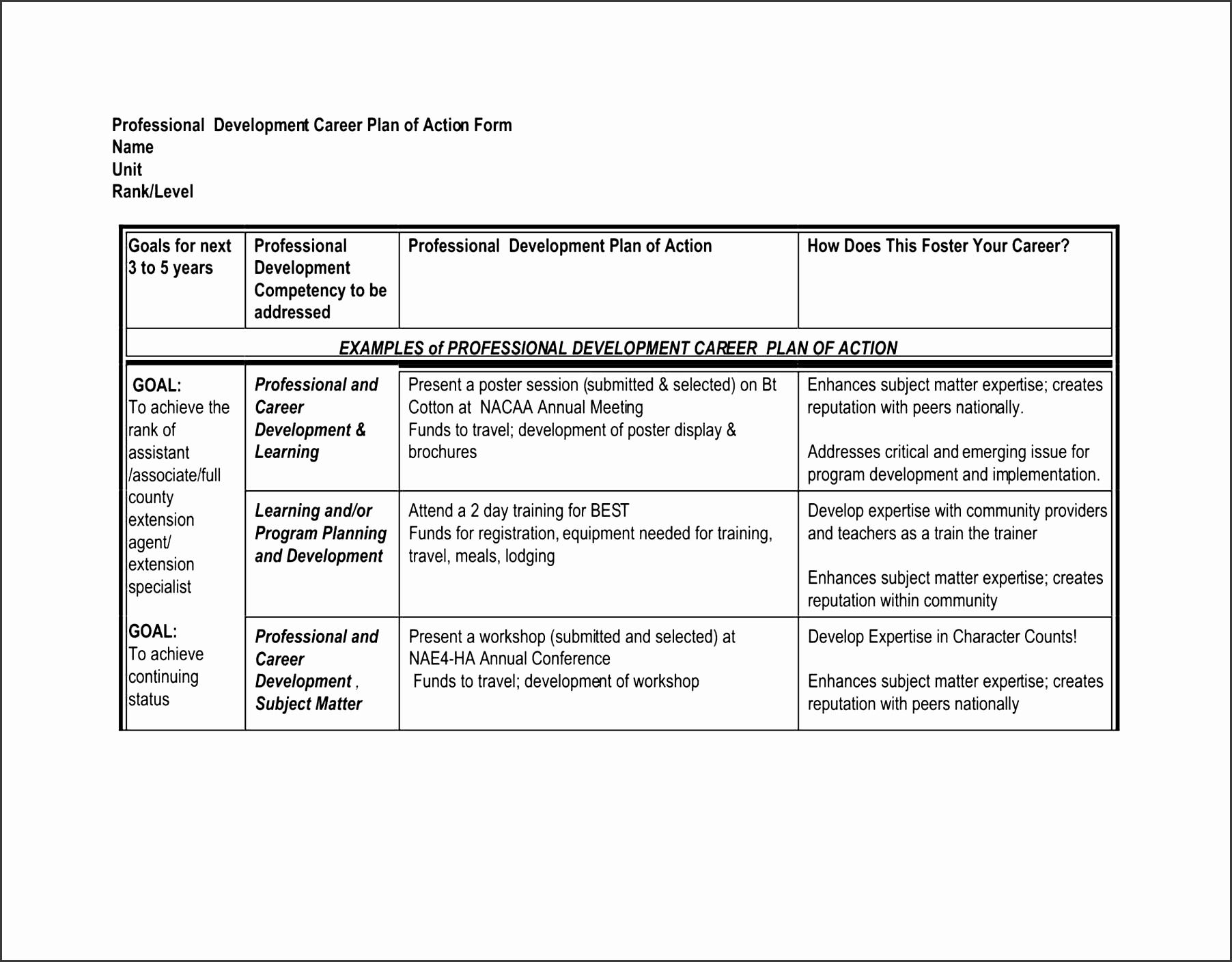 6 Professional Action Plan Template SampleTemplatess