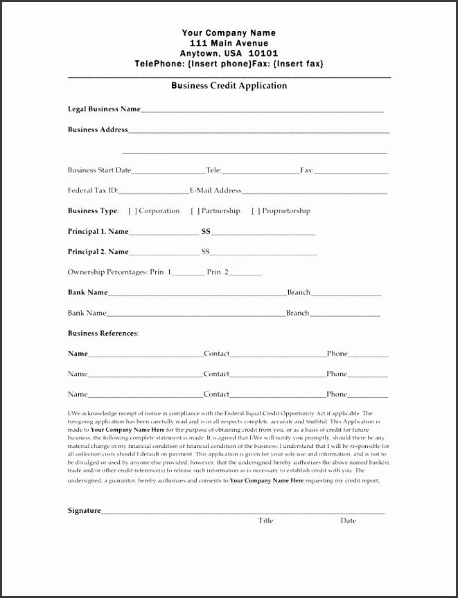 10 Credit Application Template Excel SampleTemplatess