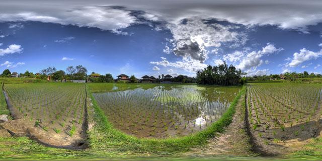 Penestanan :: Bali  :: 360° Panorama
