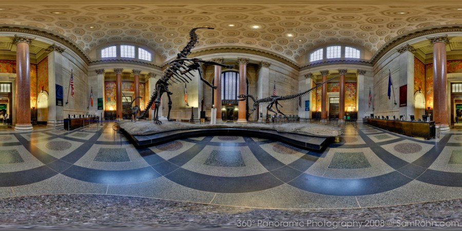 Natural History Museum Nyc Dinosaur Tallest