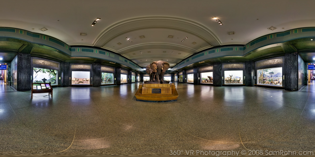 Natural History Museum New York Virtual Tour