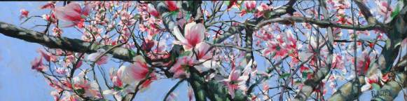 Blossoming Magnolias, 20 X 68