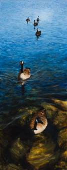 Geese in Libertyville, 60 X 24, Sold