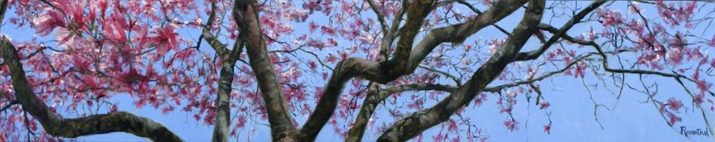Magnolia Branches, 20 X 84