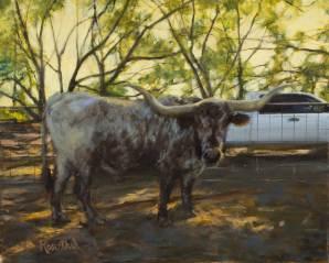 Texas Longhorn, 16 X 20