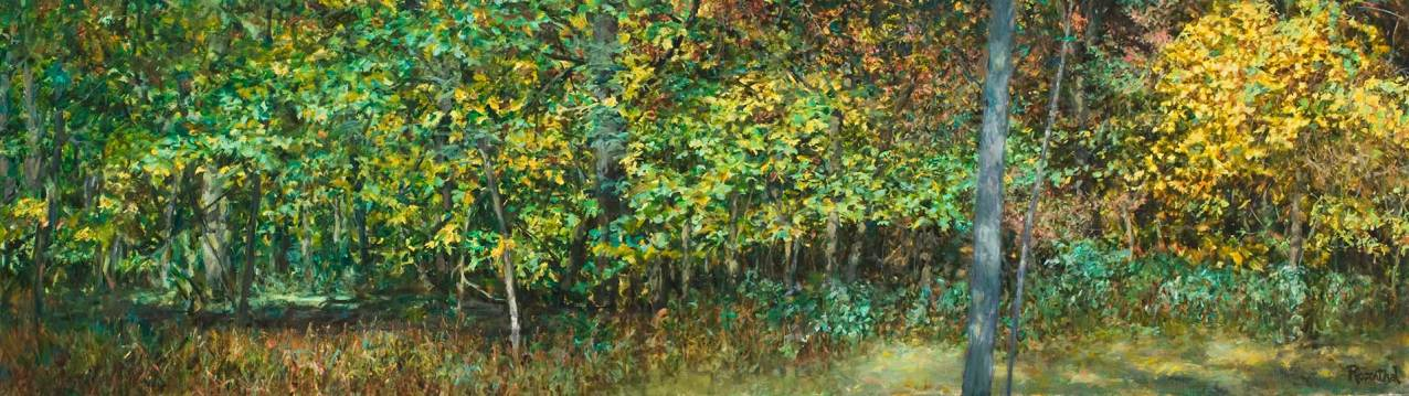 Thatcher Woods Foliage, Oak Park, IL, 24 X 84