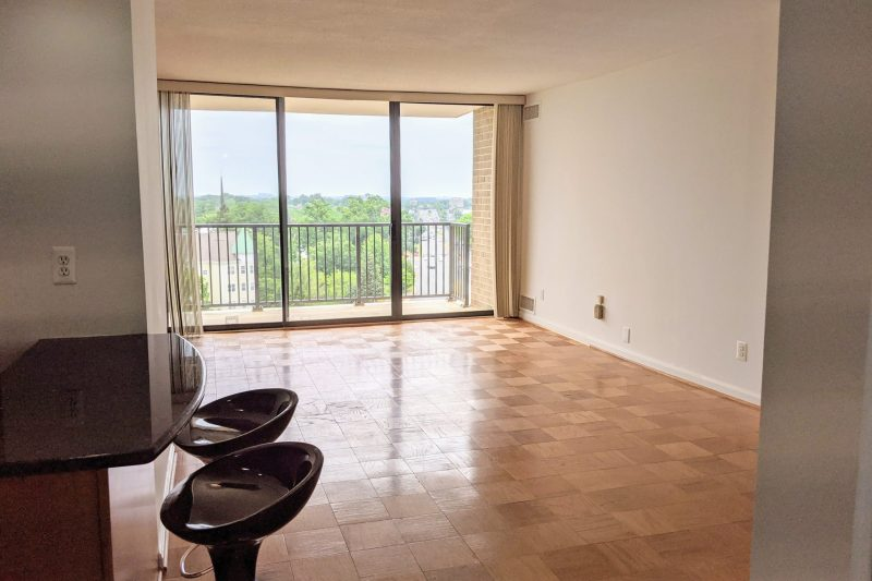 Spacious 1-Bedroom with Beautiful High-Rise View